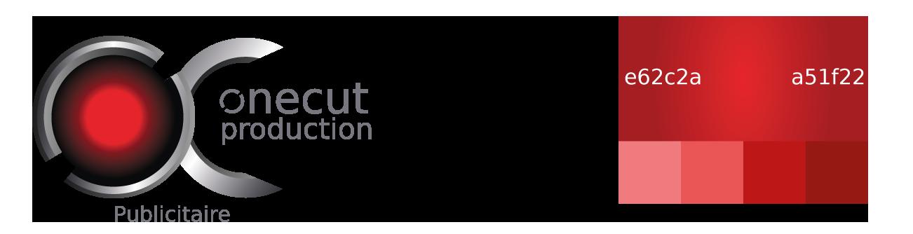 Logo publicité avec palette de couleurs