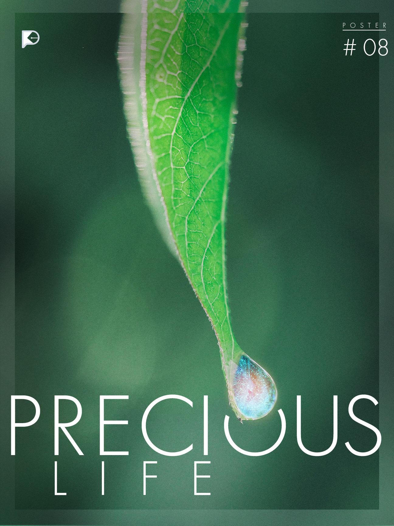 08 - Precious Life