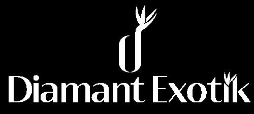 logo blanc thivan M